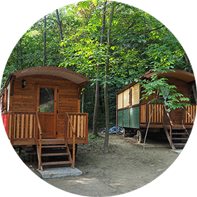 GLAMPING AREA - The Gypsy Site